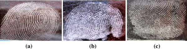 Résultats comparatifs de visualisation d'empreintes latentes sur une bouteille en verre brun avec a) silica gel b) poudre blanche c) poudre grise claire