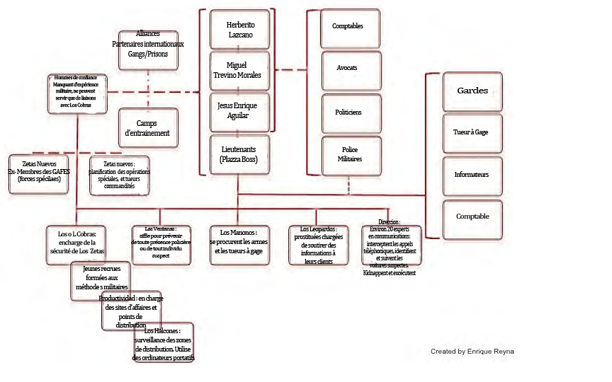 Structure hierarchique de Los Zetas