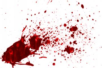 La morphoanalyse des traces de sang   Vidéo