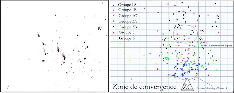 Image Digitale (à gauche) et la carte colorée correspondante (à droite)