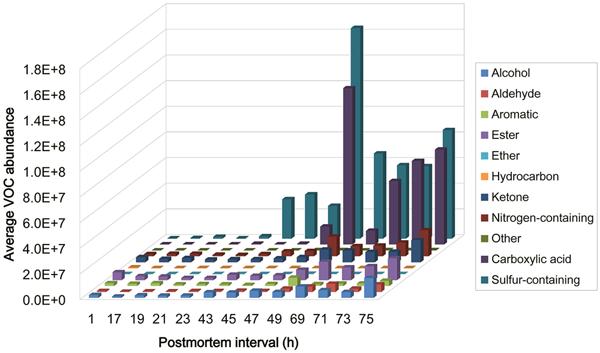 analyse des composés volatiles de la décomposition_105 nuances de mort