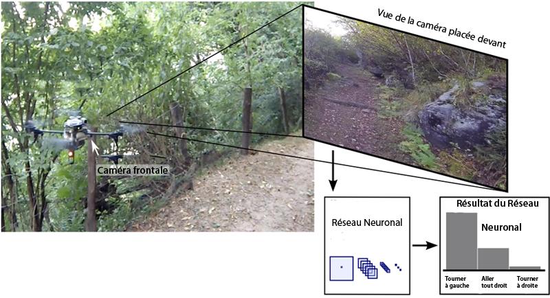 Le réseau neuronal du drone est parvenu à trouver la bonne direction dans 85% des cas