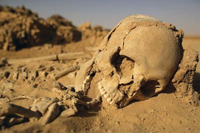Dans un environnement de type désertique, on assistera à une momification importante.