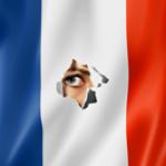 Surveillance-à-la-française