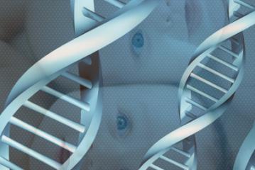 Quand l'ADN s'emmêle