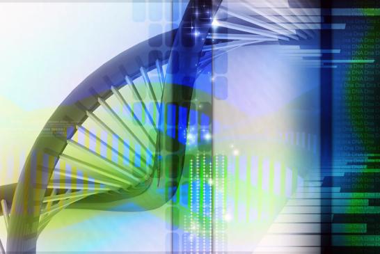 PROFIL ADN EN 70 MINUTES : QUI DIT-MIEUX ?