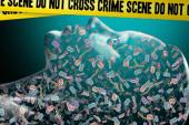 L'horloge microbienne déterminante sur une scène de crime