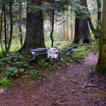 Le drone qui vole intelligemment